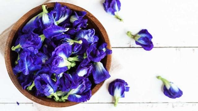 bunga talang