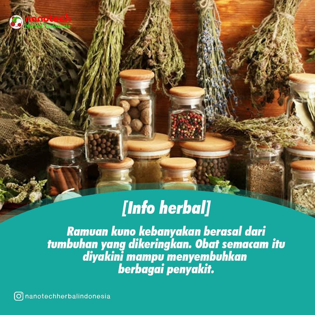 ramuan kuno herbal