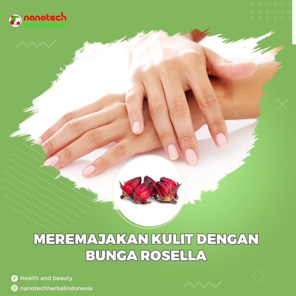 bunga rosella untuk kulit