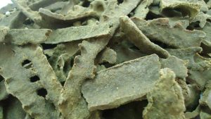 bahan baku propolis